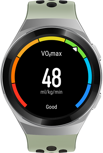 HUAWEI WATCH GT 2e professional workout data vo2max