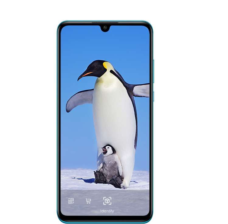 HUAWEI P30 lite New Edition HiVision