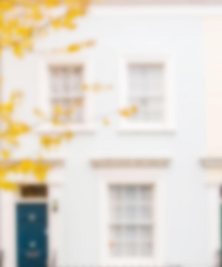 background image showing a white house