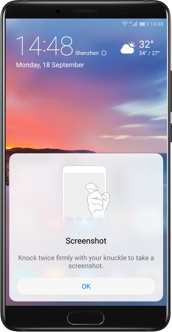 SCREEN SHOT GESTURE